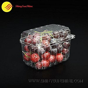 custom clamshell packaging boxes for fruits and vegetables.