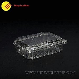 Custom plastic food packaging container boxes logos & design.