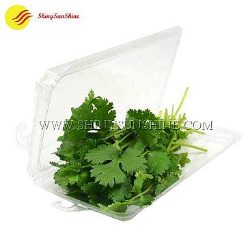 Custom clamshell packaging boxes for fresh herbs and spices.