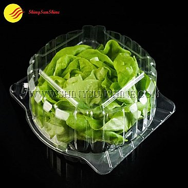 Custom clamshell packaging boxes for lettuce and salad.